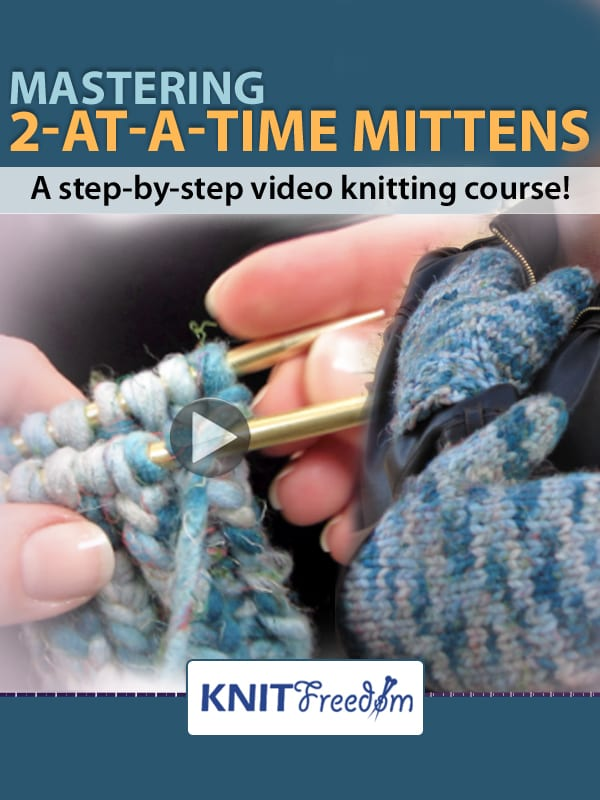 2-at-a-time Mittens Video E-Book Cover